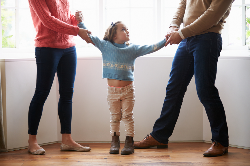 fair parenting plan